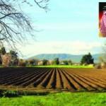 دراسة تنتقد سياسات «الانكماش» الزراعية… وتحذّر من أثرها