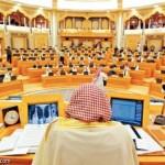 مجلس النواب المنتظر