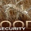 Doha to organize food security conference